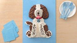 Springer Spaniel Dog Cake
