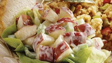 Gingered Apple-Cranberry Salad