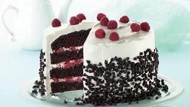 Raspberry-Fudge Fantasy Torte