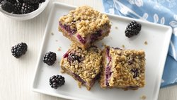 Yogurt and Blackberry Crumble Bars