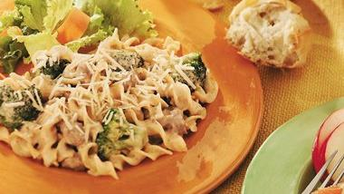 Noodles and Ground Beef Alfredo