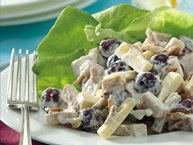 Smoked Turkey Jarlsberg Salad Supreme