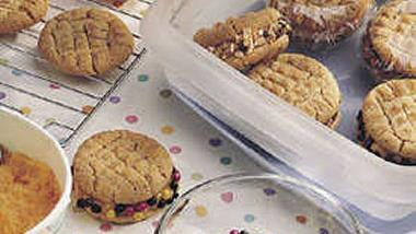 Disappearing Act Ice-Cream Sandwiches